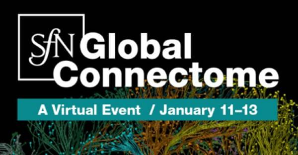 SfN Global Connectome: A Virtual Event